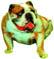 3D-Bild Bulldogge