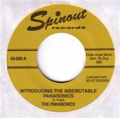 PANASONICS - Introducing The Inscrutable