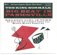KING NORMALS - Big Beat In Panicsville