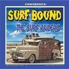 SURF RAIDERS