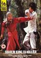 SHAOLIN KUNG FU MASTER  (DVD)