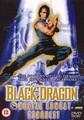 MORTAL KOMBAT - BLACK DRAGON     (DVD)
