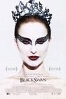 1 x BLACK SWAN