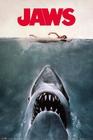 1 x DER WEI�E HAI POSTER JAWS KEY ART