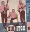x VARIOUS ARTISTS - BIG ITCH VOL. 8