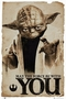x STAR WARS POSTER YODA MAY THE FORCE BE WITH YOU