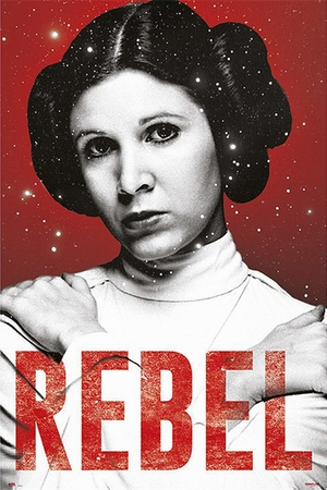 Star Wars Poster Rebel Prinzessin Leia
