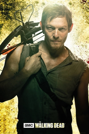 The Walking Dead Poster Daryl Dixon