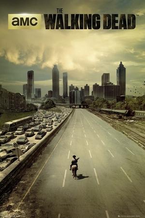 The Walking Dead Poster Dead City - Season 1