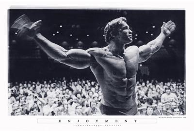 Arnold Schwarzenegger Poster Enjoyment
