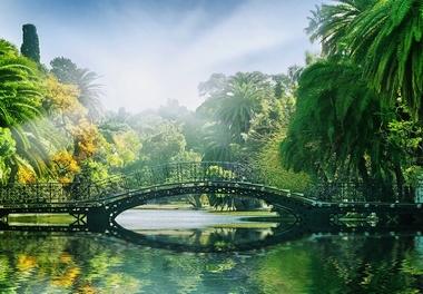 Fototapete Brücke im Park - Klicken für grössere Ansicht