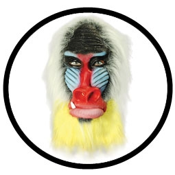 Pavian Maske Mandrill Bunt - Klicken für grössere Ansicht