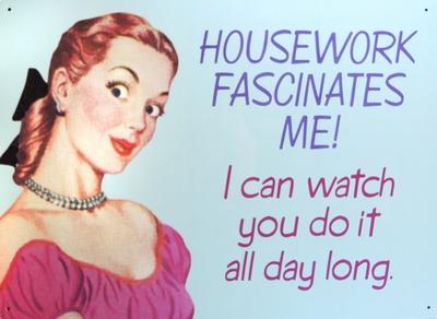Blechschild Retro Humor Housework