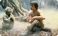 Frühstücksbrettchen - Star Wars - Luke and Yoda