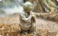Frühstücksbrettchen - Star Wars - Master Yoda