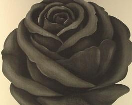 Schwarze Rose - Retro-Tapete