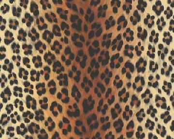 Tapete - Leopard - Dunkel