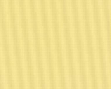 Tapete - Contzen Papers - Streifen Grün