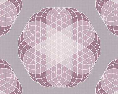 Tapete - Contzen Papers - Linear Flowers - Violett